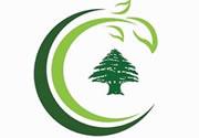 Comida Árabe Libanês