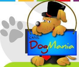 Canil Dog Mania