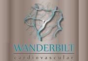 Dr. Wanderbilt Duarte de Barros Neto CRM-SP 137.96