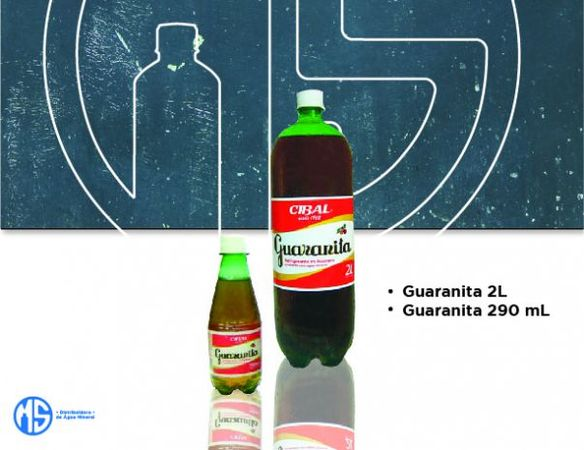 Distribuidora de Bebidas P&A