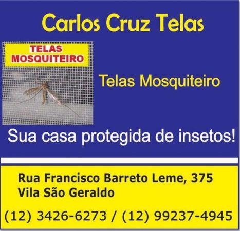 Carlos Cruz Telas