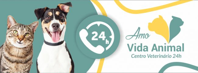 Amo Vida Animal Centro Veterinário 24h