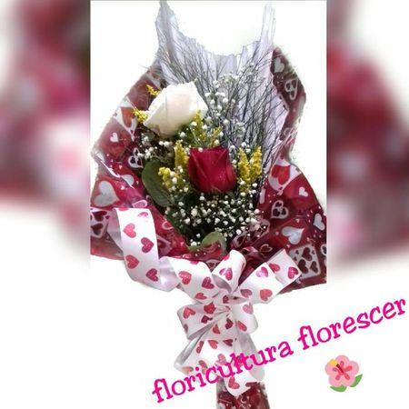 Floricultura Florescer Tremembé