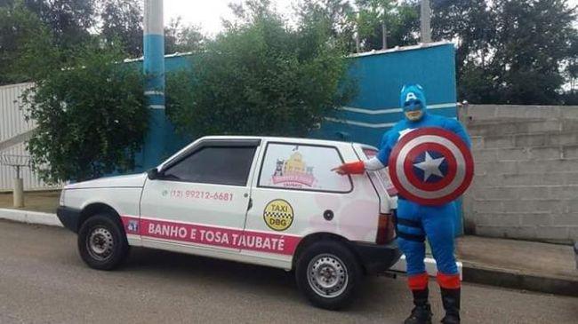 Banho e Tosa Taubaté - Táxi Dog