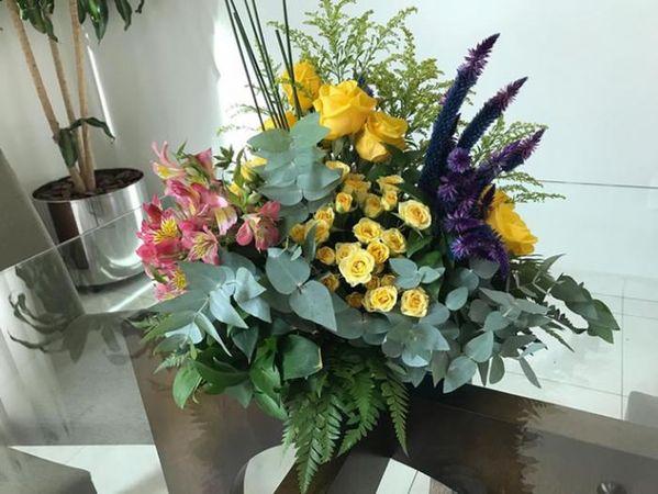 Sollus Paisagismo e Floricultura